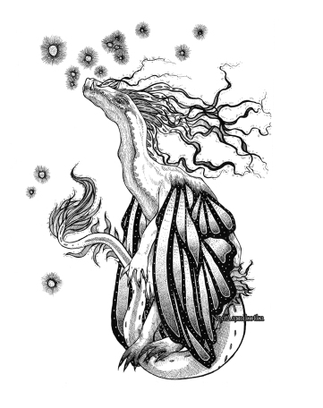 fairydr